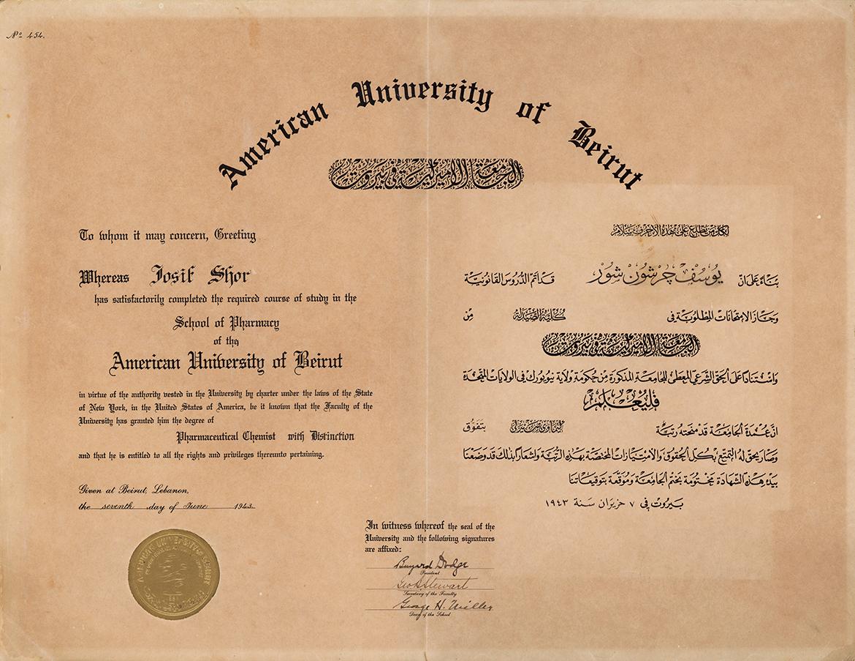 תואר מהאוניברסיטה האמריקאית בביירות
