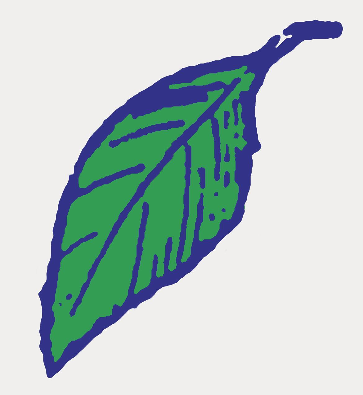 לוגו דראגסטור